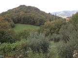 B&B Valdeator Landscape